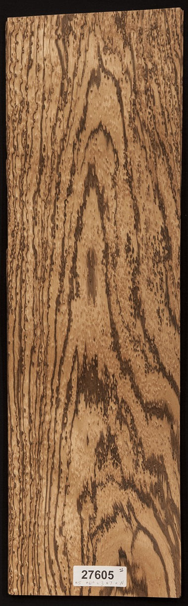 AAA Birds Eye Zebrawood Veneer Lot
