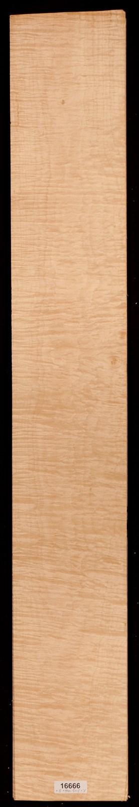 AAA Fiddleback Maple Veneer Lot