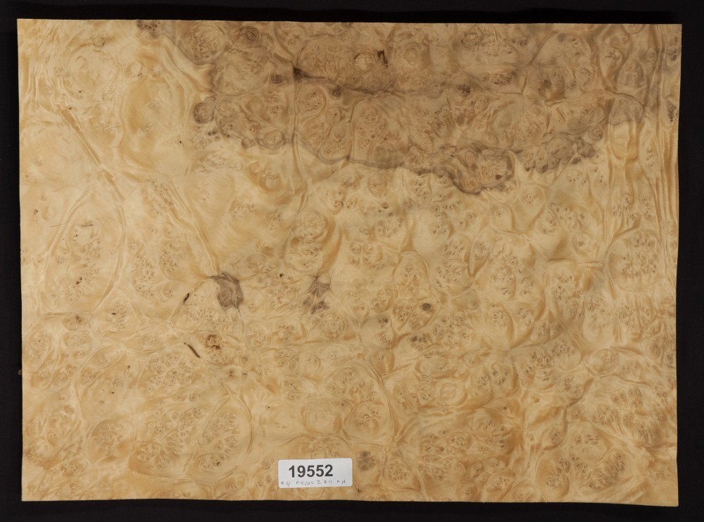 Laurel Burl Veneer Lot