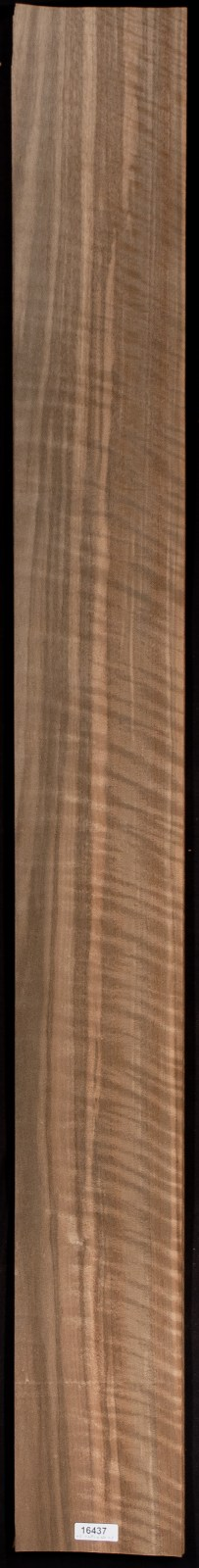 AAA Curly Walnut (Australian) Veneer Sheet