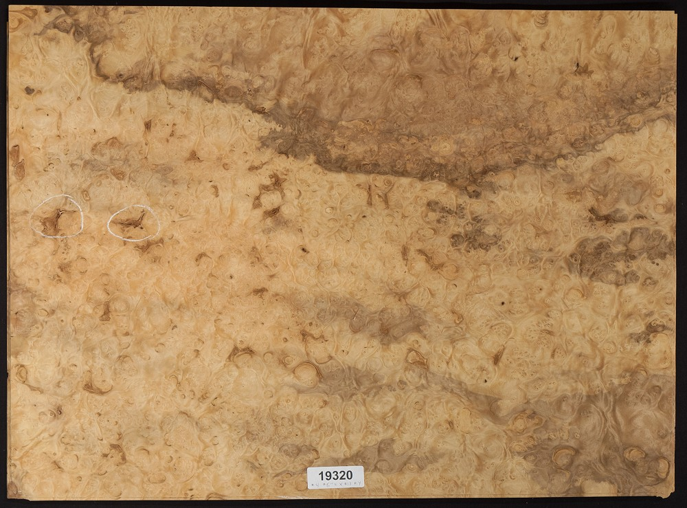 Laurel Burl Veneer Sheet