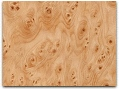 Chinese Fir Burl