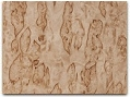 Alpine Birch Burl Veneer