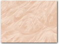 White Dyed Maple Burl