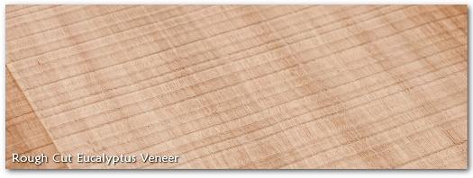 Rough Cut Eucalytpus Wood Veneer