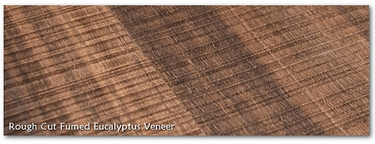 Rough Cut Fumed Eucalytpus Wood Veneer